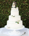 wd104849_fall09_cake16_xl